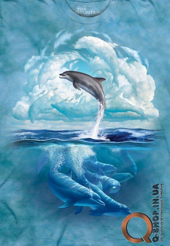 Бесплатно Дельфины было нужды