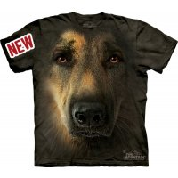 German_Shepherd_Portrait_10_34456f.jpg